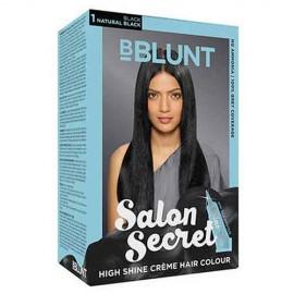 B Blunt Salon Secret Hair Colour 1 Pkt
